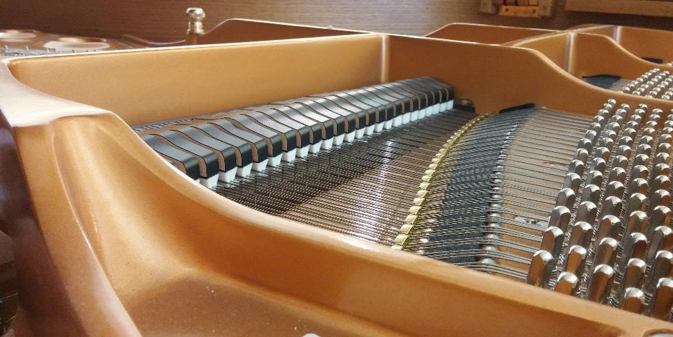 Doctor Octave's Piano Services - grand piano interior